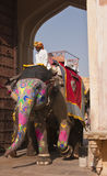 Elephant at Work Stock Images