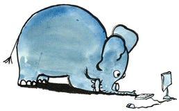 Elephant4 with PC Stock Photo