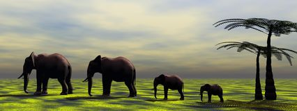Elephants. And palms and sky grey Stock Images