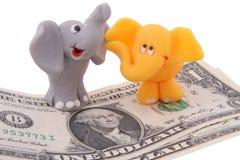 Elephants. Pair of small elephants with dosh Stock Image