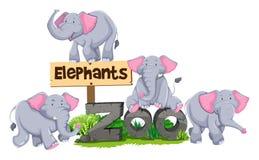 Elephants around the zoo sign Royalty Free Stock Photos