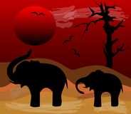 Elephants black silhouettes in evening Africa desert. Sinking red sun over a sandy landscape with dead tree Royalty Free Stock Image