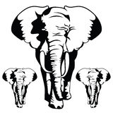 The Elephants in black and white style. Royalty Free Stock Images