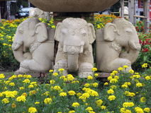 Elephants in the city. Elephants and flowers in Chiang Mai, Thailand Royalty Free Stock Image