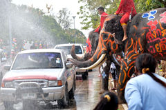 Elephants cleaning cars Stock Photo