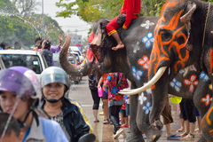Elephants cleaning traffic Royalty Free Stock Images