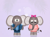 Elephants couple Royalty Free Stock Photography