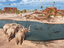 Elephants and crocodiles at a waterhole Royalty Free Stock Photos