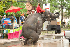 Elephants dancing in Songkran festival in Thailand. AYUTTAYA, THAILAND - APRIL 15: Songkran Festival is celebrated in a traditional New Year s Day from April 13 royalty free stock photos