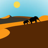 Elephants Desert Sunrise. Illustration of elephants walking through the desert at sunrise Stock Images