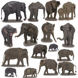 Elephants in Different Poses vector illustration