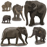 Elephants in Different Poses stock illustration