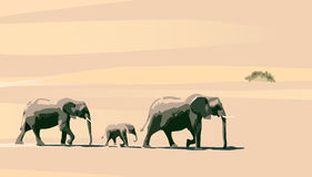 Elephants. Family of elephants on a background of yellow sand Stock Photo