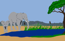 Elephants going for a drink. Illustration of two elephants going for a drink in a lake. By the river a acacia tree and in the background mountains Royalty Free Stock Photos