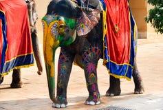Elephants of Jaipur, Rajasthan, India. Painted elephants at Amber Fort Royalty Free Stock Image