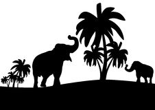Elephants in the jungle. Black and white outline illustration which depicts elephants among the palms Stock Photo