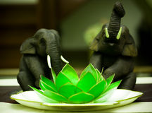 The elephants and the lotus Stock Image