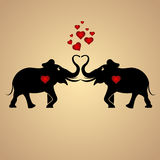 Elephants in love Royalty Free Stock Images