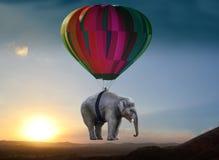 Elephants And Mammoths, Hot Air Balloon, Hot Air Ballooning, Sky Stock Photo