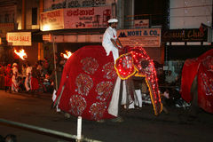 Elephants parade. The esala perahera at kandy in sri lanka.the most important buddhist festival in the world.it's a very long holy parade of elephants, dancers Stock Images