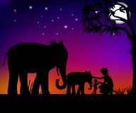 Elephants and people. Mother with child playing with elephants under night sky vector illustration Royalty Free Stock Photography