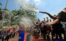 Elephants play water battle during Songkran. Elephants play water battle with tourists during Songkran festival in Ayutthaya province on April 11, 2018 stock photography