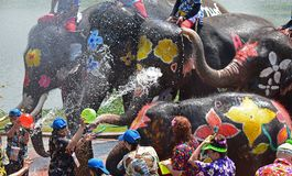 Elephants play water battle during Songkran. Elephants play water battle with tourists during Songkran festival in Ayutthaya province on April 11, 2018 royalty free stock photo