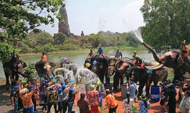 Elephants play water battle during Songkran. Elephants play water battle with tourists during Songkran festival in Ayutthaya province on April 11, 2018 stock photos