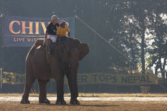 Elephants and players, during polo game, Thakurdwara, Bardia, Nepal Stock Photography