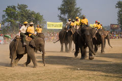 Elephants polo players during elephants polo, Nepal Stock Photography