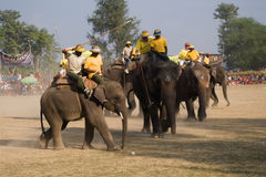 Elephants polo players during elephants polo, Nepal Royalty Free Stock Images
