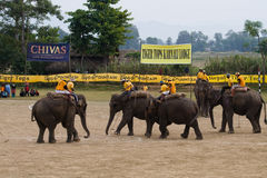 Elephants polo players during elephants polo, Nepal Stock Photos