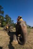 Elephants polo players on their elephants during elephants polo, Nepal Stock Photography