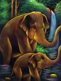 Elephants at rainfall Stock Photography