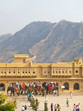 Elephants ride in the Amber Fort Royalty Free Stock Image