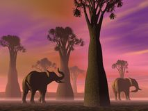 Elephants in the savannah Stock Photography