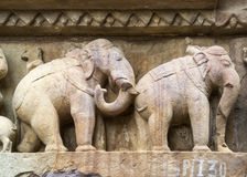 Elephants: Sculpture detail on Hindu temple in India's Khajuraho. Royalty Free Stock Photo
