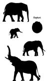 Elephants in silhouette. Collection of elephants on white background in black silhouette. Also included a elephant track Royalty Free Stock Photos