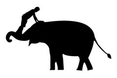 Elephants silhouettes Royalty Free Stock Image