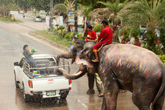 Elephants splashing water in Songkran festival in Thailand. AYUTTAYA, THAILAND - APRIL 15 Songkran Festival is celebrated in a traditional New Year s Day from Royalty Free Stock Photography