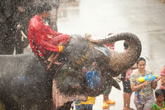 Elephants splashing water in Songkran festival in Thailand. AYUTTAYA, THAILAND - APRIL 15: Songkran Festival is celebrated in a traditional New Year s Day from Royalty Free Stock Photography