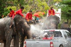 Elephants splashing water in Songkran festival in Thailand. Royalty Free Stock Photos