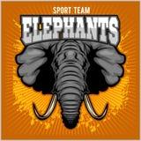 Elephants - sport club team symbol. Safari hunt badge of yellow, elephant tusk. Vector sign for africa hunting sport stock illustration