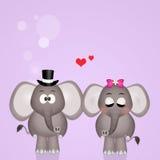 Elephants spouses. Cute illustration of elephants spouses Stock Images