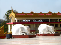 Elephants statues. Its photo of elephant statues. Place - Global pagoda, Mumbai stock images