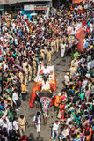Elephants on street of India, annual event. Royalty Free Stock Photos