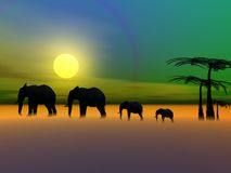 Elephants and sun Royalty Free Stock Image