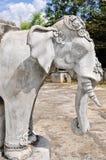 Elephants in the temple Stock Photos