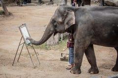 Elephants Royalty Free Stock Image