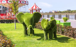 Elephants. Topiary figure in the Kremlin embankment of the river Kazanka. Royalty Free Stock Image